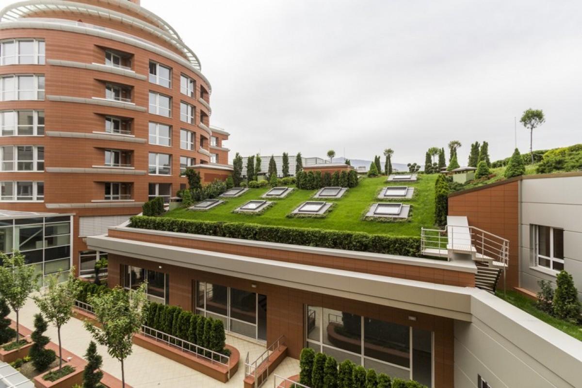 Докторската градина остава магнит на пазара на недвижими имоти в София