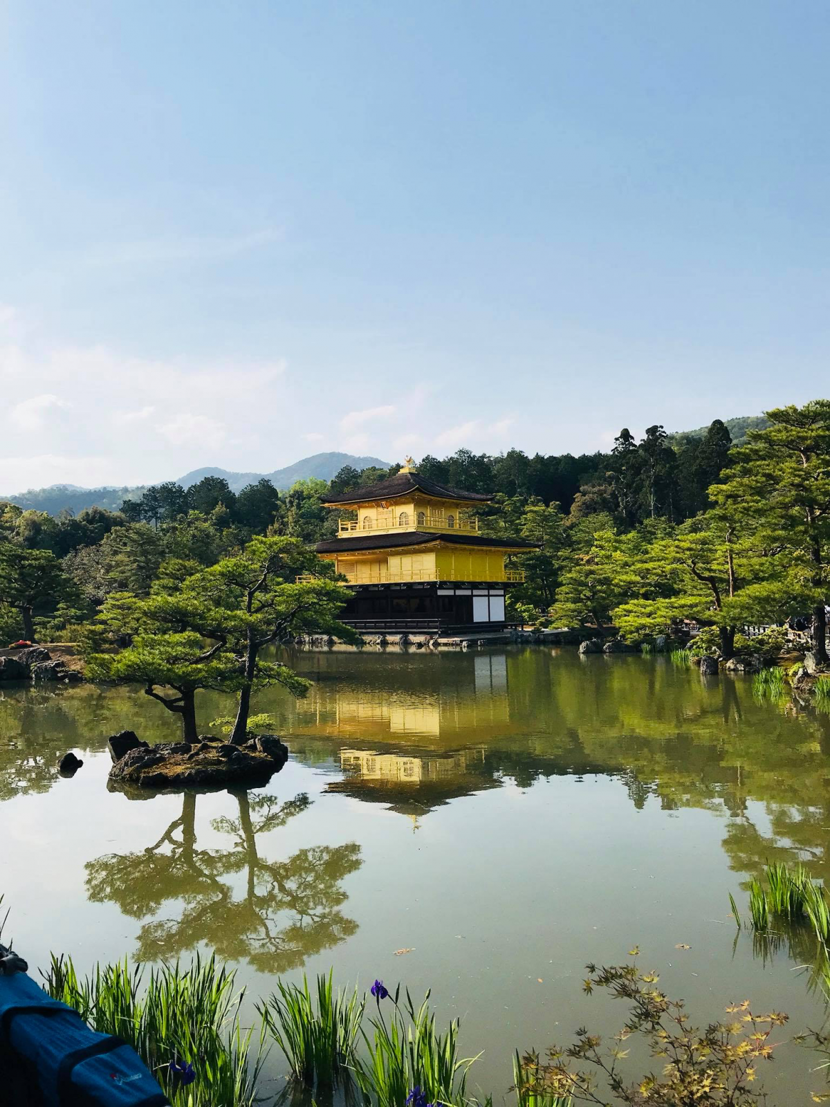 Around the world with Unique Estates - Vesela Ilieva in Japan