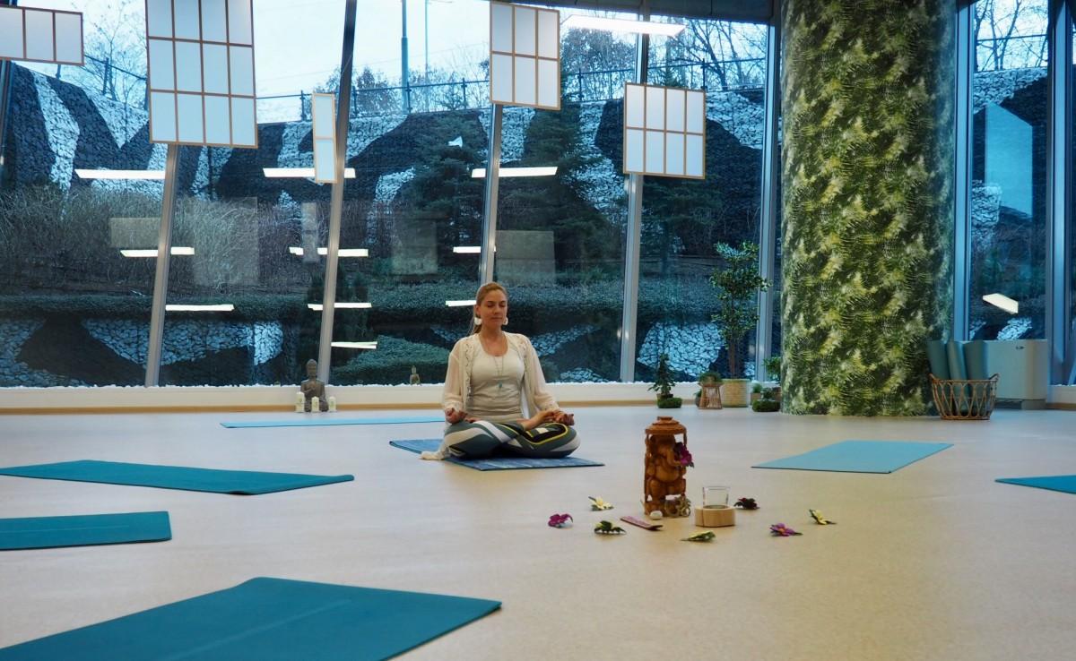 2HEALTH HUB - modern zen oasis at the foot of Vitosha mountain